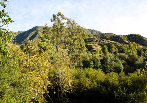 "The breathtaking beauty of the Ojai Valley, used by Frank Capra as ""Shangri-La"" in his 1937 film classic, Lost Horizon."