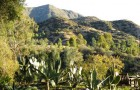 Goodlifer: Serenity Reigns Supreme at Ojai Retreat Casa Barranca