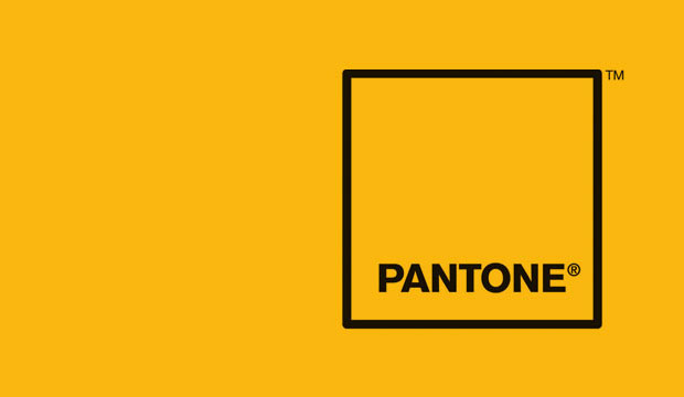 Goodlifer: Pantone's Color of the Year: Mimosa
