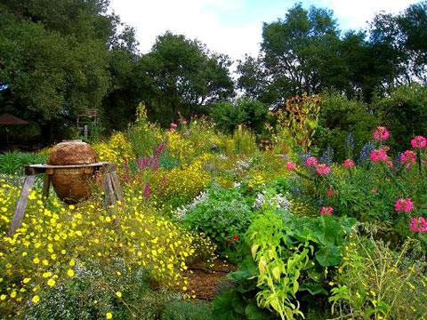 The Melissa Garden.