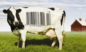 Goodlifer: Food, Inc. - Revealing the Secrets of Our Food System