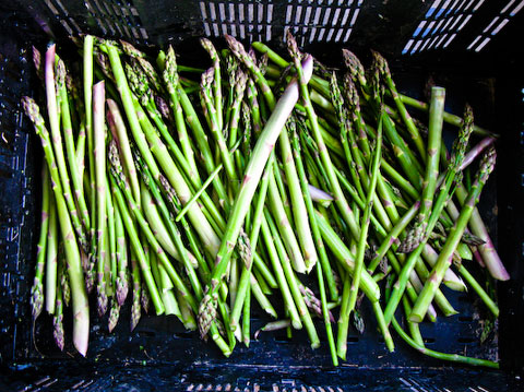 How many people do you know that have a crate of fresh asparagus in their kitchen?