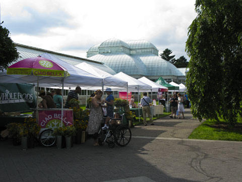On festival weekends, you can sample wares from various vendors by the conservatory. My faves: Swedish cider, wine slushies & raspberry gelato.