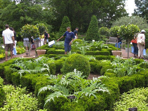 Martha Stewart's fragrant herb garden was a big hit among all ages.