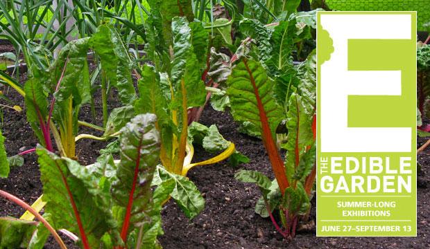 Goodlifer: The Edible Garden
