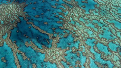 "Great Barrier Reef, Queensland, Australia (16°55' S – 146°03' E). © ""HOME"" – an ELZEVIR FILMS – EUROPACORP coproduction."