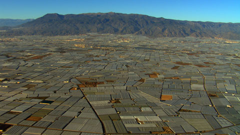 "Greenhouses in San Augustin near Almeria, Andalusia, Spain (36°42' N - 2°44' W). © ""HOME"" – an ELZEVIR FILMS – EUROPACORP coproduction."