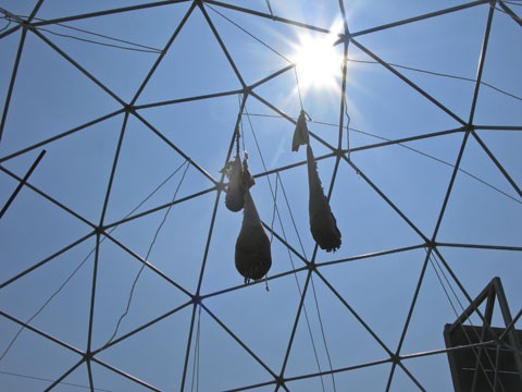 Geodesic dome structures can be covered when the weather calls for it.