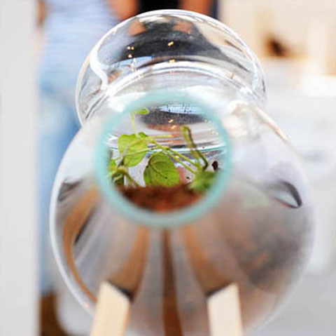 Nienke Sybrandy's 'Grondvormen' project discovers new possibilities in everyday things, as with this ready-made terrarium and it's micro-macro view of the world.