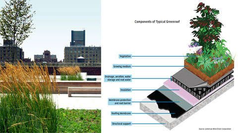 Components of a green roof. To be suitable, buildings need to be able to withstand a large weight load.