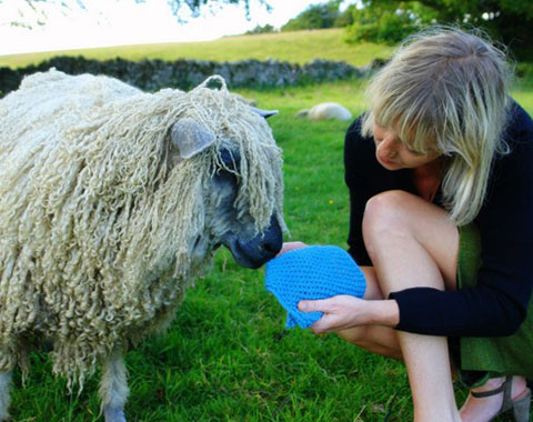 Isobel Davies of Izzy Lane with one of the 600 rescued sheep on her wool farm.