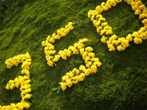 350_yellow