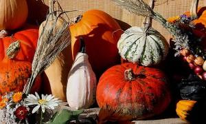 Goodlifer: Fall Holiday Decorating: Cheap, Conscious & Seasonal