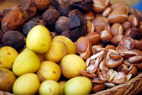 Argan oil is made from the nuts of the Argan trees, which grows only in the Southwest of Morocco.