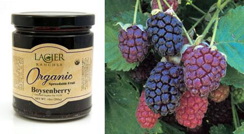 Lagier Ranches Organic Boysenberry Preserve.