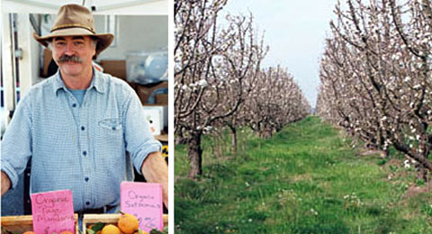 Left: John Lagier. Right: the Lagier Ranches orchard.
