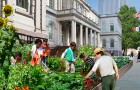 Goodlifer: Who wants a garden at City Hall?