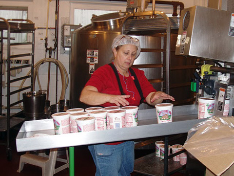 Yogurt from Seven Stars Farm being packaged.