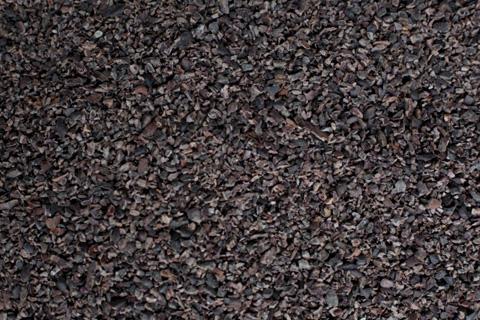 Tierra Farm's raw cacao nibs.