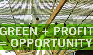 Green Can, Should and Has to Be Profitable