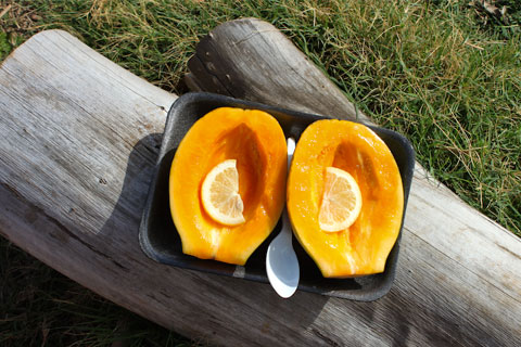 You cannot get papaya as good as the ones they have in Hawaii anywhere else, so I decided to make it part of my daily diet.