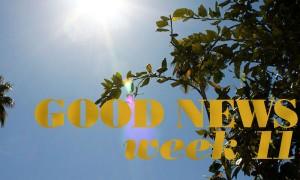 GL_GoodNews_W11_ft