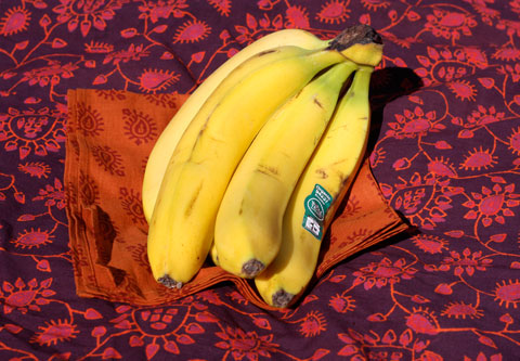 Bananas are the most consumed fresh fruit in the U.S., and represents a whopping 50 percent of all U.S. fresh fruit imports. Photo courtesy of Fair Trade Certified.