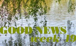 GoodNews_W19_ft
