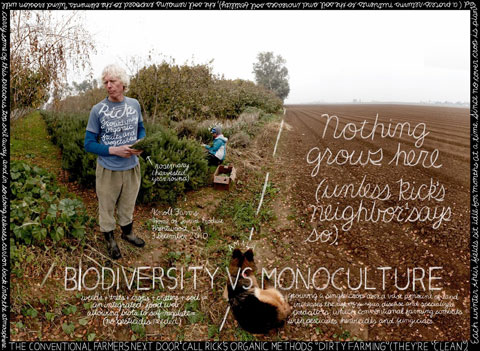 INDUSTRIAL AGRICULTURE = MONOCULTURE. SMALL FARMS = BIODIVERSITY: Small, organic farms like Rick Knolls eliminate their reliance on petrochemical based fertilizers and pesticides. The results are fewer pollutants, less environmental degradation, and cleaner air.  Cover cropping and other soil fertilization principles also allow sequester carbon and keep topsoilwhich is carbon heavyfrom being lost into the atmosphere, which also contributes to climate change.