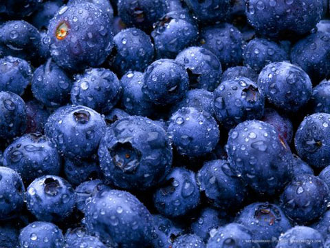 "I can't recall that my parents or any other adults ever really talked about the impact of the Chernobyl disaster. Except for one thing: ""don't eat the blueberries!"""