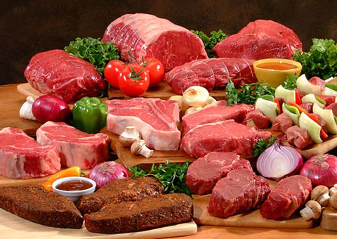 Dr. Campbell's research revelaed startling information: eating animal protein makes us sick.