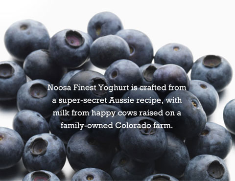 Goodlifer: Noosa Yoghurt