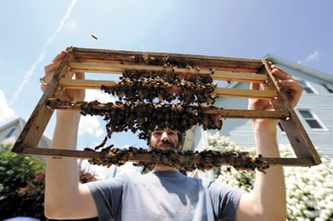Dean Stiglitz, co-owner of Golden Rule Honey. Photo by Charles Sternaimolo, via WB Journal.