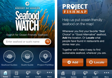 8 Smartphone Apps for Sustainable Living