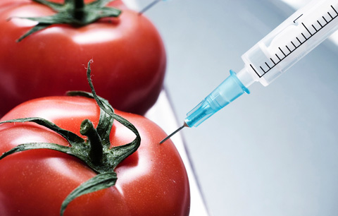 Proposition 37—The Right to Know Genetically Engineered Food Act—requires clear labels letting consumers know if foods are genetically engineered. If passed, it wouldn't ban GMOs, just require producers to clearly state on the label that a certain product contains genetically modified ingredients.