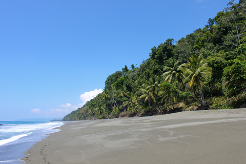 Paradise on earth, a tranquil beach on the Osa Peninsula in the southwest of Costa Rica.