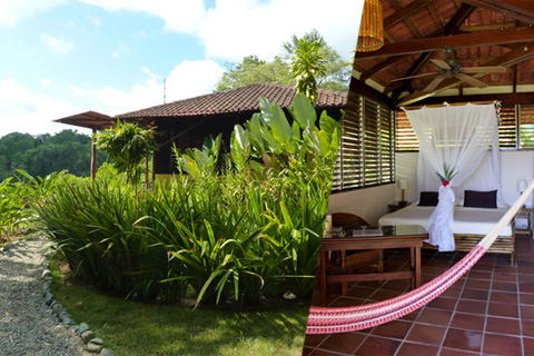 The cozy cabins at El Remanso are all nestled into the pristine rainforest setting and are rustic but luxurious.
