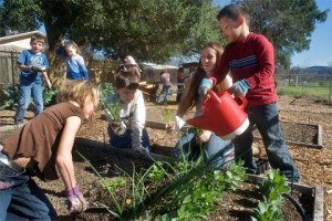 70% of students at Meiners Oaks Elementary participate in the garden club.