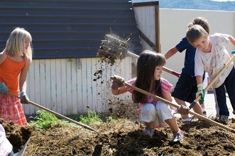 Kids getting their hands (and white pants) dirty, working in their school garden.