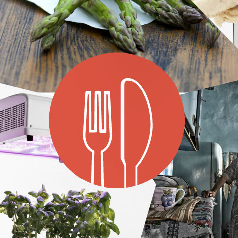 Sustainia Top-10 Award Finalist: Food Sector: Fenugreen