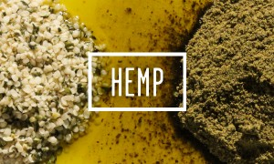 Goodlifer: Why Hemp Should Be Your New Hero Food