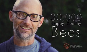 A Tour of Moby's LA Home, Where He Keeps 30,000 Bees