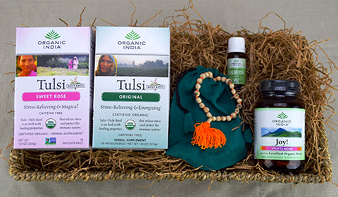 Goodlifer: Good Gifts for Your BFF: Organic India Holiday Cheer Gift Basket